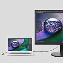 best monitor for developers